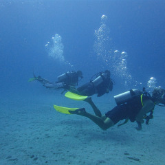3 Scuba Divers on our Great Barrier Reef tour from Cairns