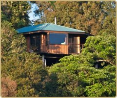 Secluded & Private Luxury Treehouses at Cairns Tablelands