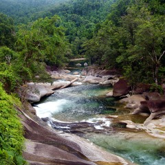 See beautiful rainforest rivers on our Rainforest and Waterfalls tour