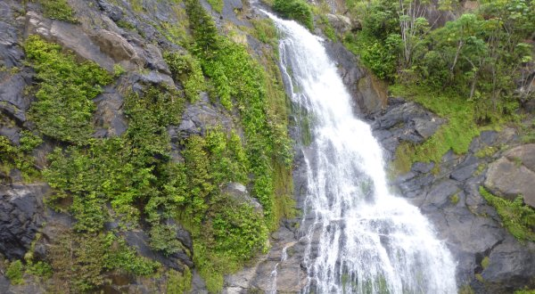 See magnificent waterfalls as the train winds its way around the mountains