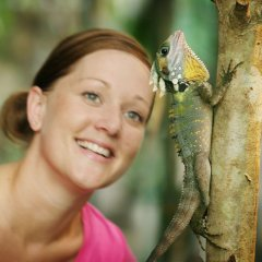 See the huge range of native Australian wildlife at the Wildlife Habitat in Port Douglas Queensland Australia