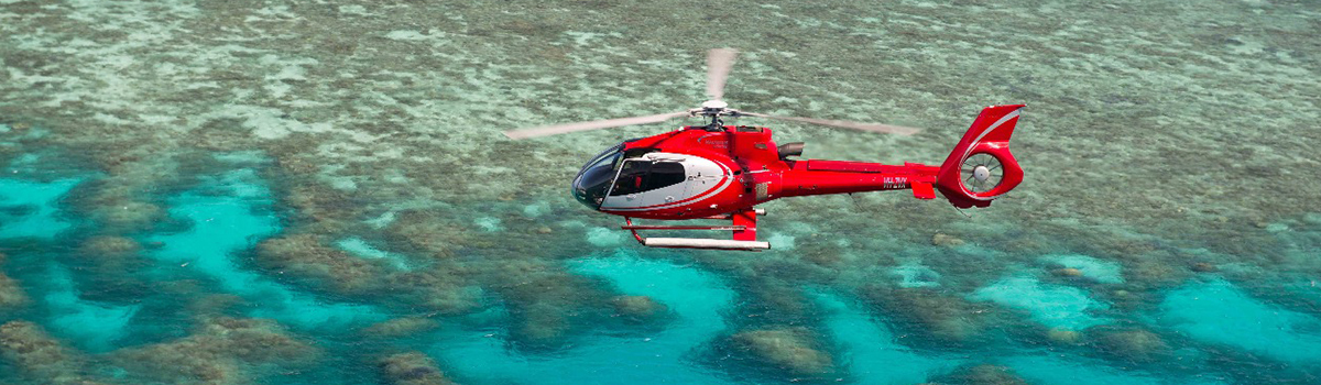 Great Barrier Reef and Helicopter Tour, see the reef from a bird's eye view in a helicopter