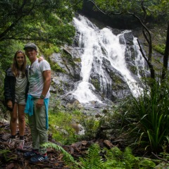 See tranquil waterfalls in the Daintree Rainforest on our nature tours