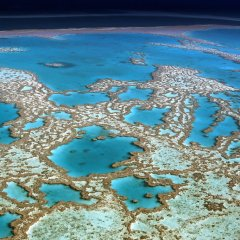 Seeing the Great Barrier Reef from the seat in a helicopter is just tremendous
