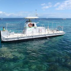 Big Cat - Green Island Reef Cruises