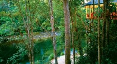 Silky Oaks Rainforest Lodge located on the Mossman Gorge River, 15 mins from Port Douglas