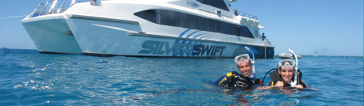 Scuba Dive Trips Cairns MV - SS Great Barrier Reef