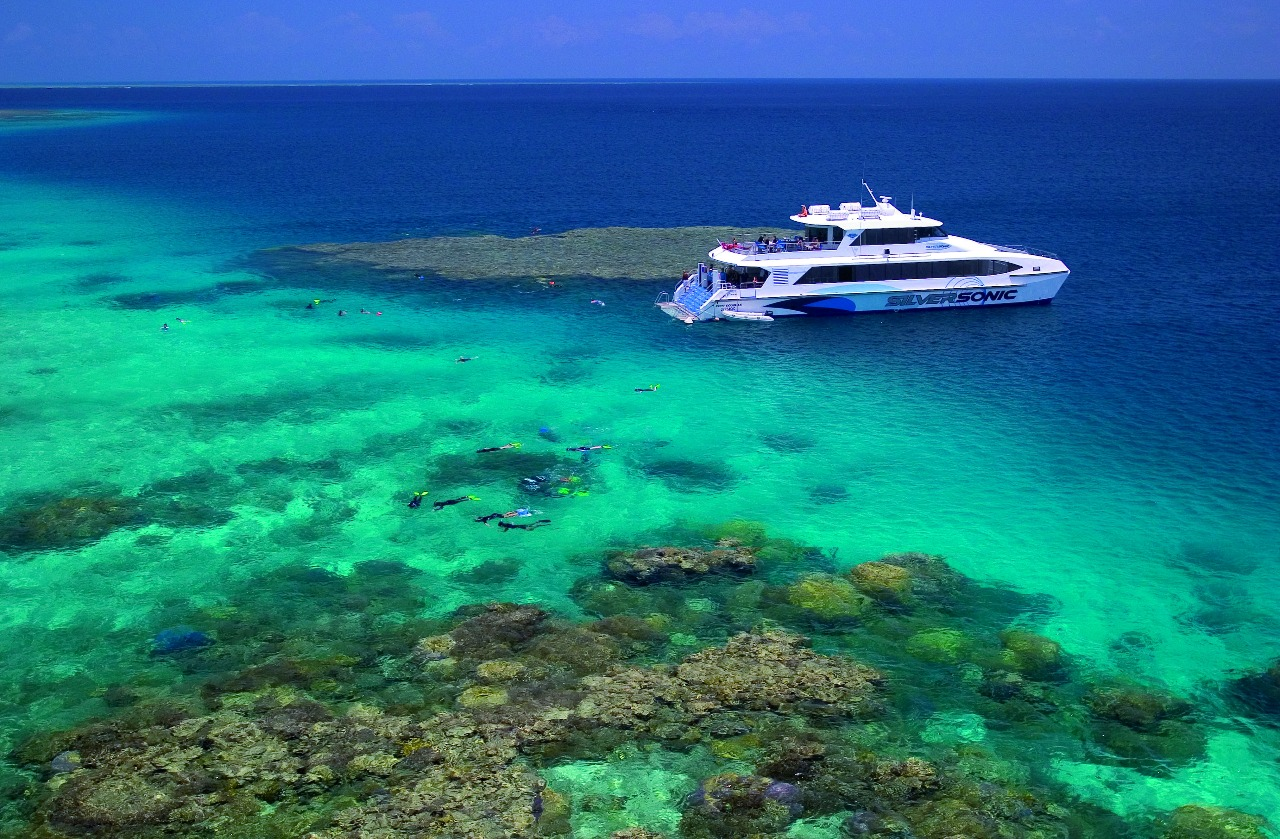 Cairns And Port Douglas Reef Trips 3 Day Ultimate Great Barrier Reef Tour Pass Dive Snorkel