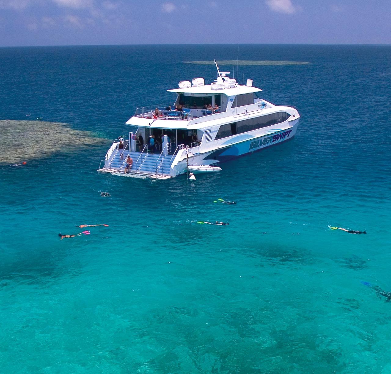 Great barrier reef tour scuba dive snorkel tour 3 reef sites - Dive great barrier reef ...