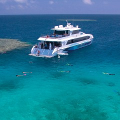 This luxury high speed catamaran takes you to 3 snorkel and dive locations on the outer Barrier Reef from Cairns in Queensland Australia
