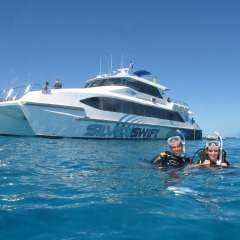 Silverswift reef tour from Cairns