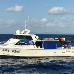 Sir Reel Cairns Fishing Charter