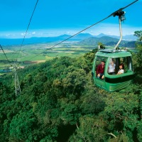 Skyrail Rainforest Cableway | Best Value Kuranda Day Trip Departing Cairns