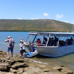 Small Cruise Ship | 72 Guests Max | Stanley Island