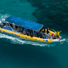Small Group Great Barrier Reef Trip Maximum 25 Guests
