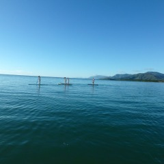 Small Group | Stand Up Paddle Boarding On Low Isles Off Port Douglas | Great Barrier Reef