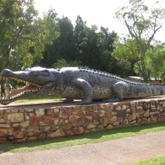 Snap a photo with Krys the Crocodile at Normanton
