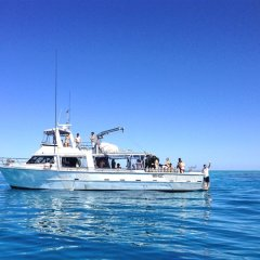 Snorkel and Dive Vessel on the Reef