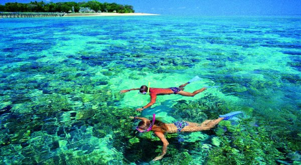 Snorkel at Green Island on Full Day Combo Tour
