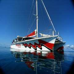 Snorkel & Dive on 2 reef locations on the 1 day on Great Barrier Reef Australia