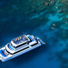 Great Barrier Reef Tour | Snorkel tours from Port Douglas Queensland Australia
