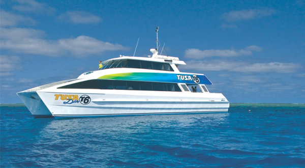 Snorkel & dive trips Cairns | Great Barrier Reef Tour