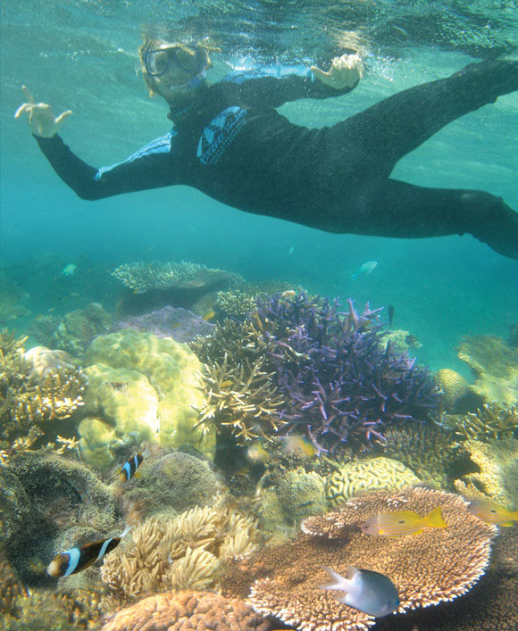 Fitzroy Island: Cheapest Great Barrier Reef Island Tour