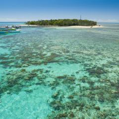 Aerial view of Green Island in a helicopter on the Great Barrier Reef