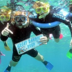 Family Snorkel tour fun on the Great Barrier Reef