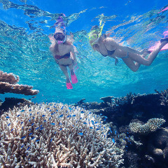 Snorkel on The Great Barrier Reef & Visit the Australian Outback in 2 Days