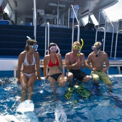 Snorkel straight off the back of the boat | Great Barrier Reef Tour