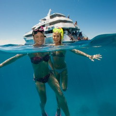Gold Class Great Barrier Reef Trip | Includes Personal Snorkeling Tuition
