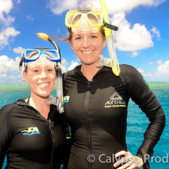 Snorkel tour Cairns | Great Barrier Reef Tour