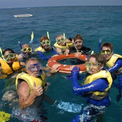 Snorkeling Tour Cairns | Great Barrier Reef Australia