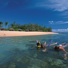 Snorkel with turtles around Low Isles on the Great Barrier Reef from Port Douglas in Australia