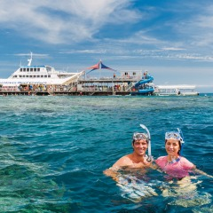Snorkelers enjoying themselves on the Great Barrier Reef