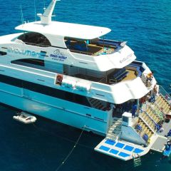 Snorkellers and divers platform on the luxury boat on the Great Barrier Reef