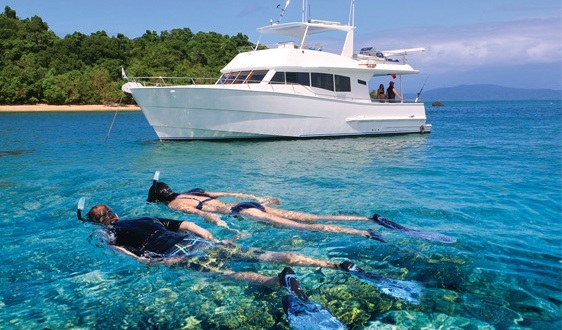 Snorkelling around Low Isles in Port Douglas - Private Charter Boat