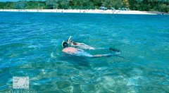 Snorkelling at Green Island Resort