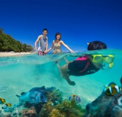 Snorkelling Fitzroy Island Resort | Cairns' Island Resorts