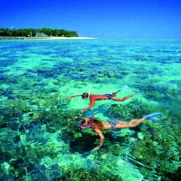 Couple snorkelling around Green Island on the Great Barrier Reef