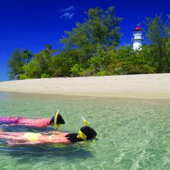 Snorkelling off Low Isles Port Douglas
