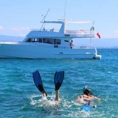 Snorkelling on the Great Barrier Reef- Private Charter Boat Port Douglas