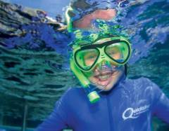 Snorkelling On The Great Barrier Reef | Great Fun Filled Activity For Children