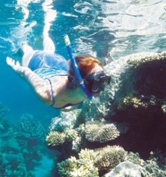 Snorkelling The Great Barrier Reef | Activities For Teenagers In Port Douglas North Queensland Australia