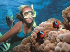 snorkelling tours by the tour specialists