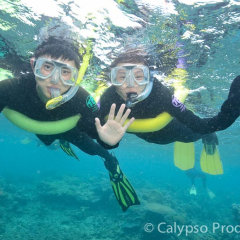 Snorkelling with pool noodles for Floatation | Great Barrier Reef Tour