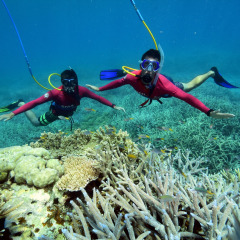 Snuba (diving) - Go Beyond Snorkelling