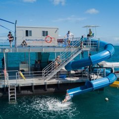 Spaghetti slide on the Great Barrier Reef pontoon off Cairns