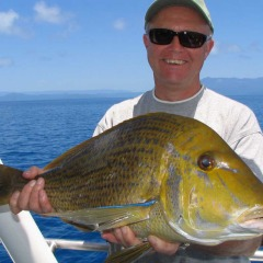 Fish Of The Great Barrier Reef | Tropical North Queensland | Spangled Emperor Caught Off Port Douglas